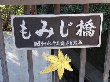 13.10.27野川42