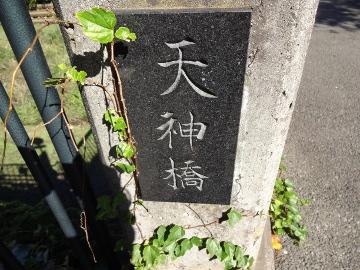 13.10.27野川90