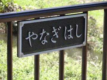 13.10.27野川115