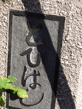 13.10.27野川145