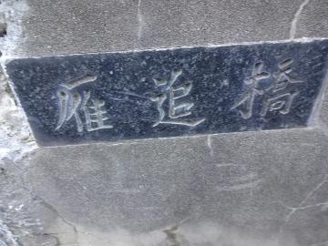 13.10.27野川243