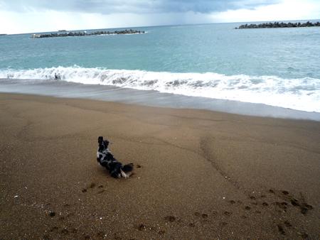 鷹巣海水浴場