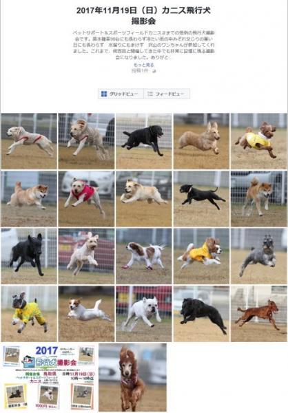 2017年飛行犬写真.jpg