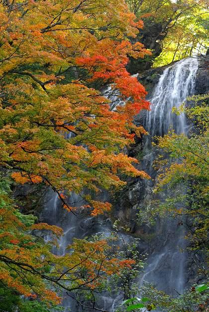 五ヶ瀬町の白滝
