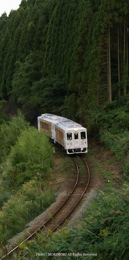 観光特急列車 JR 海幸山幸 04
