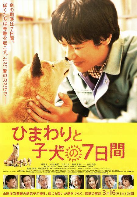 ひまわりと子犬の7日間 映画チラシ01