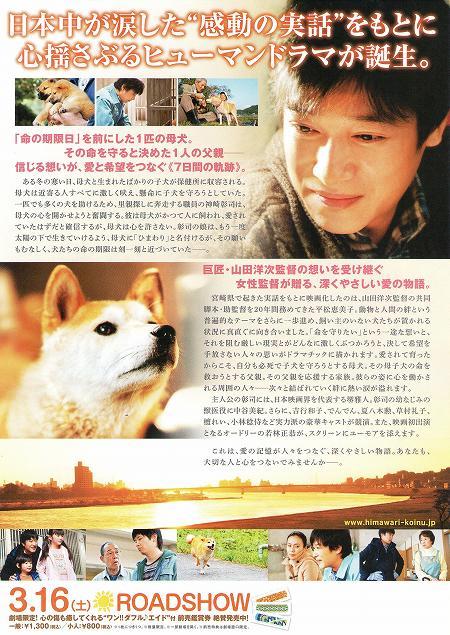 ひまわりと子犬の7日間 映画 チラシ2