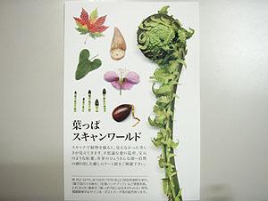 葉っぱスキャンワールド