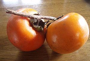 今年は柿が豊作