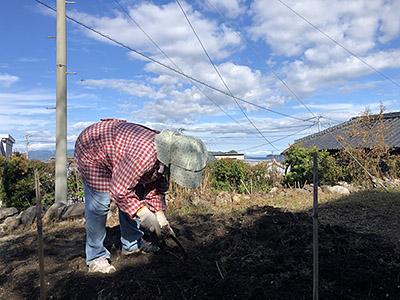 秋の農作業