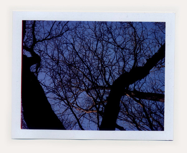 冬景色_kiyo03