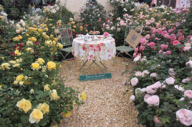 s_IMG_45568国際バラとガーデニング庭.jpg