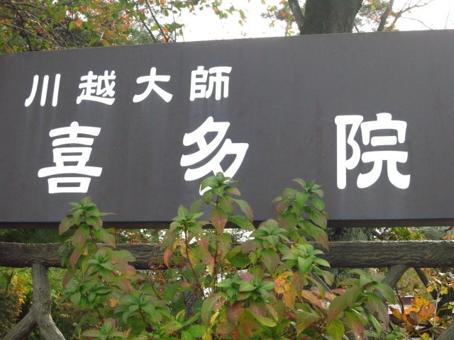 s_2014-11-05%20008.jpg川越菊まつり3.jpg