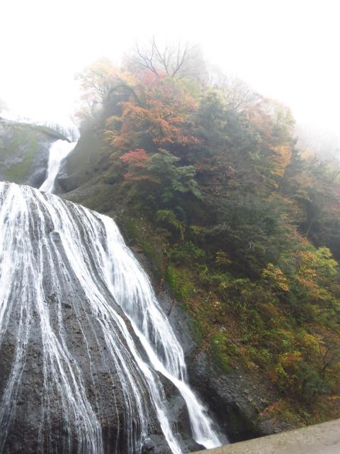 s_2014-11-12%20カーブス旅行(袋田の滝)%20006.jpg