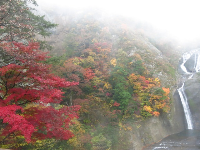s_2014-11-12%20カーブス旅行(袋田の滝)%20009.jpg
