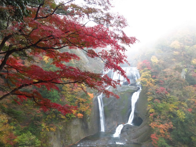 s_2014-11-12%20カーブス旅行(袋田の滝)%20023.jpg