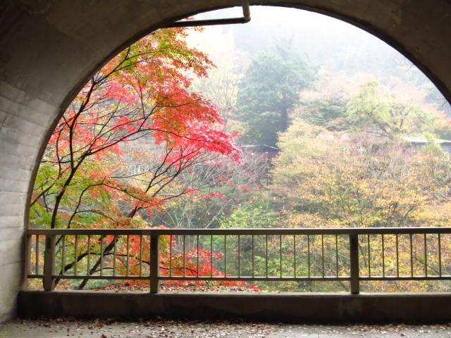 s_2014-11-12%20カーブス旅行(袋田の滝)%20031.jpg