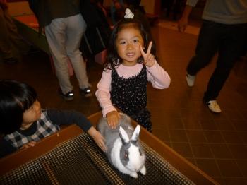 ウサギは余裕
