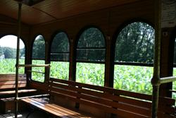 ピクニックバス風景