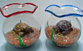 クロヤマガメ2亜種