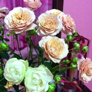 そして、今週のお花(*^^*) いつも母が生けてくれています。有難う(^^) 花の純なエネルギーの中、皆様と踊れることが嬉しいです。
