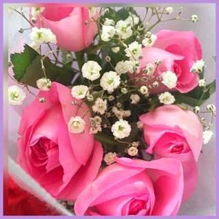 優しいお色のピンクのバラ
