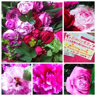 Ememoana, Furida, Elafetia, Meldihina より素晴らしく美しいお花を頂戴致しました。