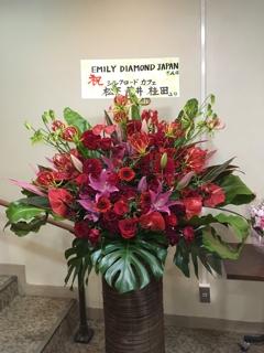 国際アラビアンダンス協会 MSベリーダンススタジオの愛おしいミーナ先生よりお花を頂戴致しました。有難うございました。