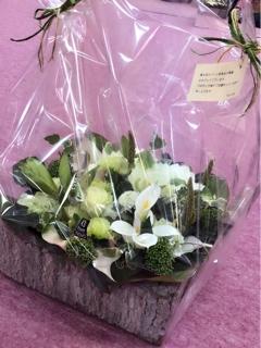 いつもお世話になっております、私達の憩いの場Silkroad Cafeの松下さん、藤井さん、あゆみさん。美しい豪華なお花を有難うございます。