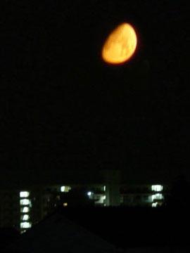 マンゴーのように熟した月