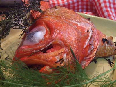 金目鯛のお頭 ハーブグリル