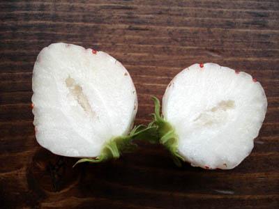白いいちご3
