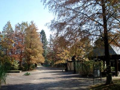 四季の森1