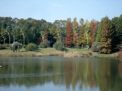 四季の森4