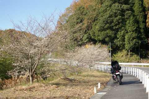 小原にて渋滞回避