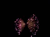 蝶の形の花火です。8月7日の五戸花火大会で撮った写真です。