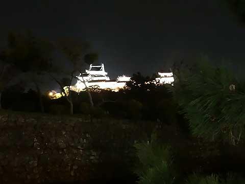 コースから見る和歌山城・夜
