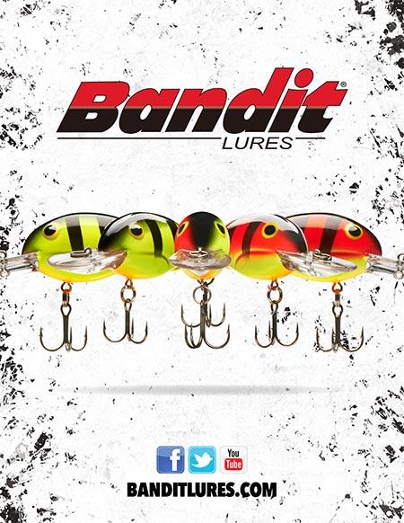 Bandit 16-1.jpg