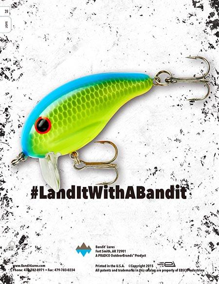 Bandit 16-24.jpg