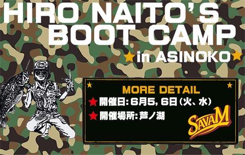 HIRONAITO3.jpg