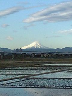 ツーキニストと富士山