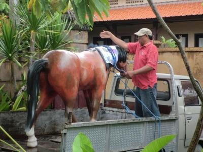 引き取られる馬