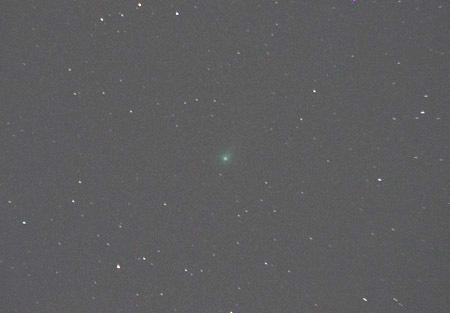 ラヴジョイ彗星 都内