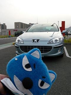 Peugeot,プジョー,407,東組オフ