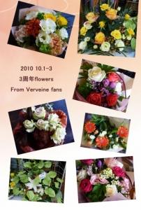 3aniflowers