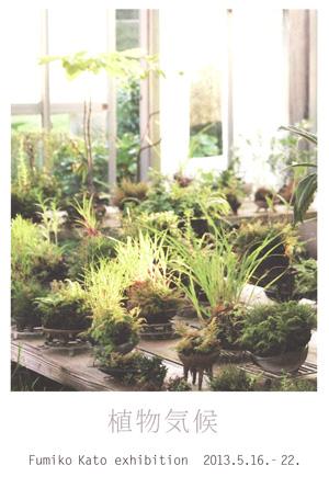 加藤文子の植物「植物気候」