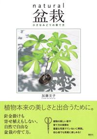 加藤文子「natural盆栽」