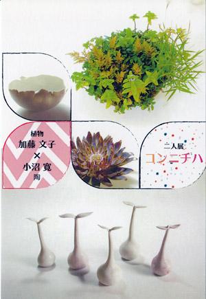二人展 コンニチハ 加藤文子(植物)小沼寛(陶)展