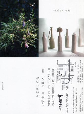 みどりの家族 小沼 寛(陶)加藤文子(植物)