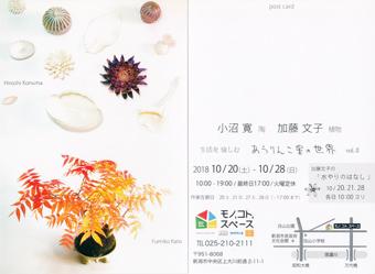小沼寛・陶 加藤文子・植物 生活を愉しむ あうりんこ星の世界 vol.�